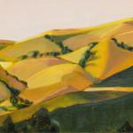 Harding-Blackhawk-Hills-(w)