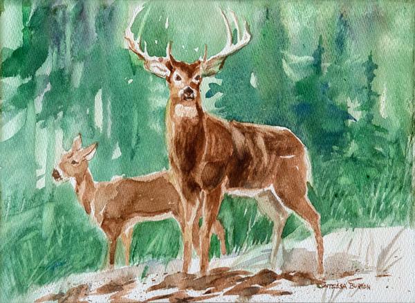 Burton--Deer-(w)