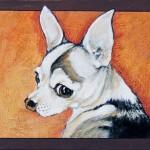 Huang-Dog-1-(w)