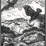 arline-reimann-wings-over-diablo
