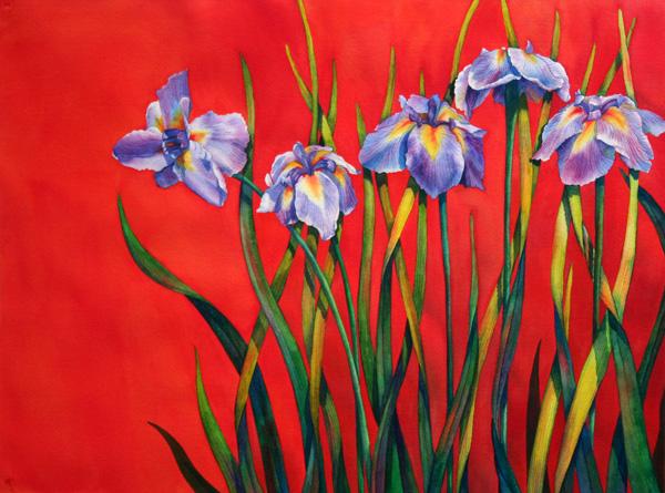 denise-miller-Japanese-Irises-No-2