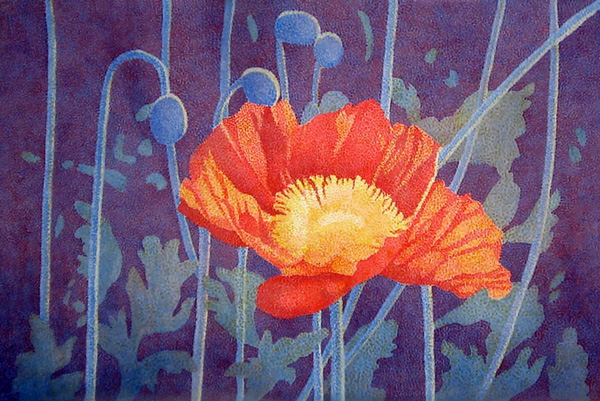 Cl_Lutz_Red_Poppy(w)
