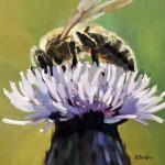 Bealer-Worker-Bee-(w)