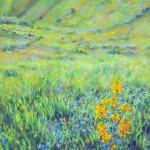 Swain-Spring-on-Mount-Diablo-(w)