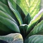 Devitt-Green-Velvet-(w)