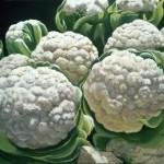 Devitt-cauliflower-(w)-001