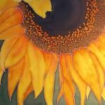 Helmer-Sun-Worshiper-(w)