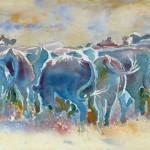 Nootbaar-Herd-(w)