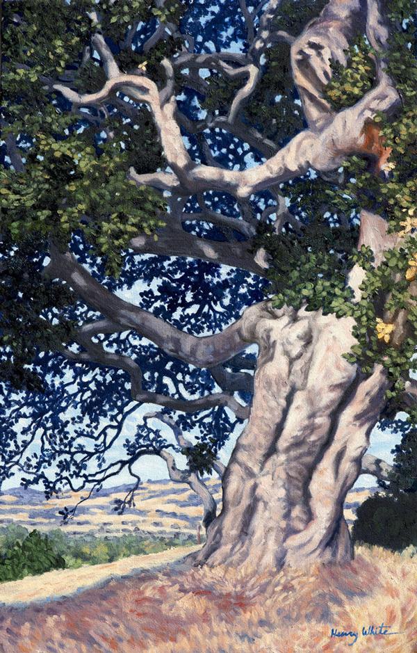 Henry-White-Oak--(w)