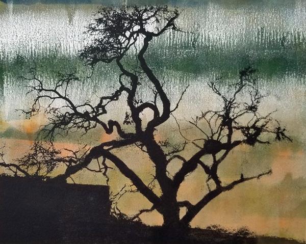 gmorrison_shadelands_tree_(w)
